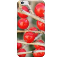Winter Berries, High Line, Winter View, New York City's Elevated Park and Garden  iPhone Case/Skin
