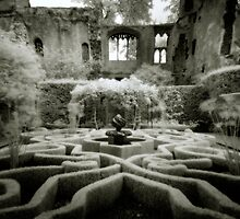 Haunted Ruins by Angie Latham