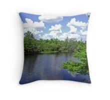Florida River Throw Pillow