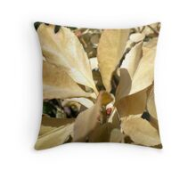 Dried Out And Thirsty Throw Pillow