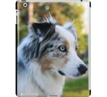 Australian Shepherd Blue Merle iPad Case/Skin