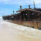 shipwreck  by discodave