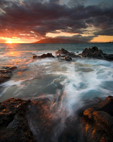 Full to the Brim by DawsonImages