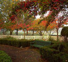 Autumn arrives by Rosalie Dale