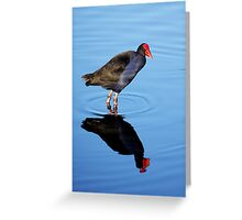 Pukeko Greeting Card