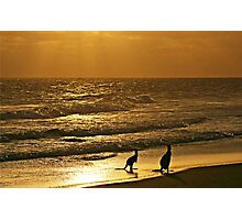 Early one morning,  just as the sun was rising. Photographic Print