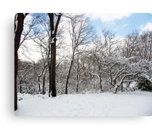 Snow and Blue Canvas Print