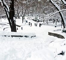Winter Scene in NYC Park by MissCellaneous