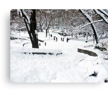 Winter Scene in NYC Park Canvas Print