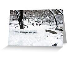 Winter Scene in NYC Park Greeting Card