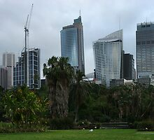 Sydney's Oasis by MiImages