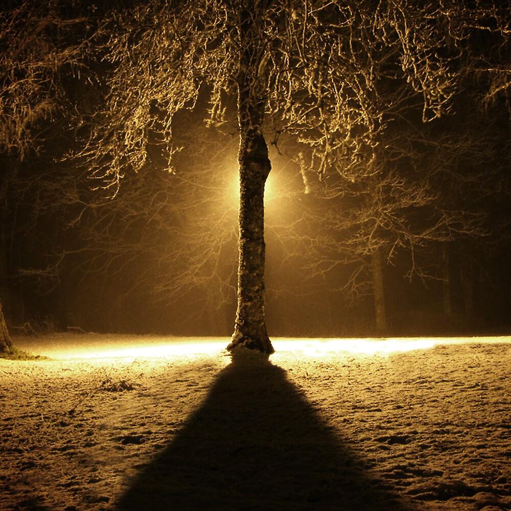 Snow by Eddy Charlton
