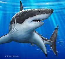 Blue Predator - Great White Shark by David Pearce