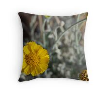 Desert Sunflower No. 1 Throw Pillow