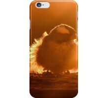 Early birds... iPhone Case/Skin
