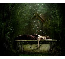 Sleeps With Butterflies Photographic Print
