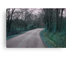 Winding Road Blue Canvas Print