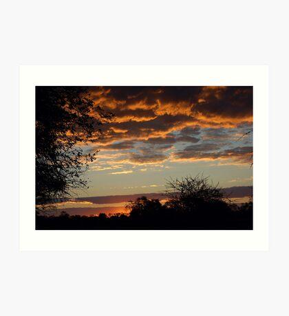 "TYPICAL ""BUSHVELD"" SUNSET Art Print"