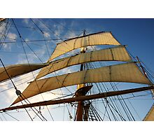 Sunlit Sails Photographic Print