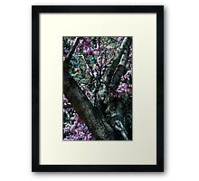 The Atmosphere Surrounds a Tree Framed Print