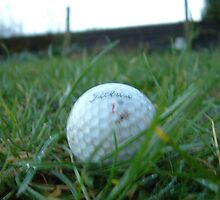 Golf Ball 2 by Murdo  Anderson