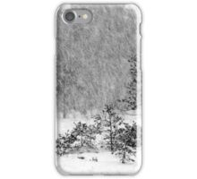 26.12.2014: Blizzard II iPhone Case/Skin
