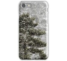 26.12.2014: Pine Tree, Blizzard iPhone Case/Skin