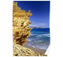 Tongue Point from Darby Cliffs Poster