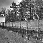 Sachsenhausen - IV by Peter Wiggerman