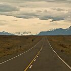 Patagonia road by David Chesluk