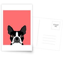 Kennedy - Boston Terrier customizable dog gifts for pet owners and Boston Terrier gifts for dog lovers Postcards