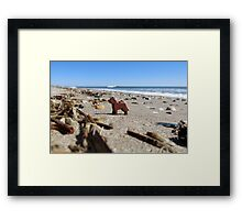 Rover? Shipwrecked?  Framed Print