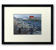 Port Circumcision, Antarctica Framed Print