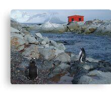 Port Circumcision, Antarctica Canvas Print