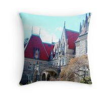 St Mary's of Providence (Langoma)  - Part 5 of 6 Throw Pillow