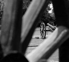 Canon Wheel by Robyn Maynard