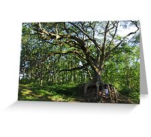 Under the Old Oak Tree Greeting Card