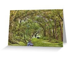 Silent Sentinel - First Light Greeting Card