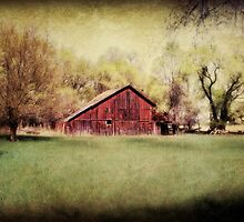 Nebraska in the Spring by BarnArtandMore