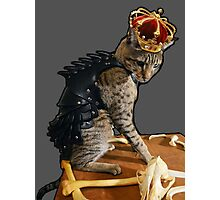 Dragon Slayer King Cat Photographic Print