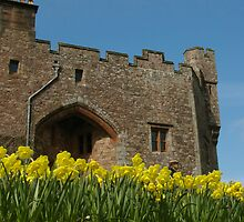 Muncaster Castle by Ciaran O'Hagan