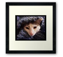 Simply Cozy Framed Print