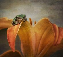 Frog Prince by Victoria Jostes
