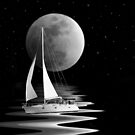 Moonlight Cruise by Maria Dryfhout