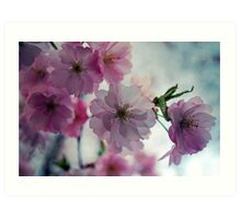 This is why I love spring Art Print