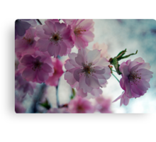 This is why I love spring Canvas Print