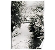 River through Carcassonne Poster