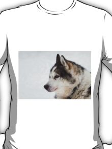 Husky dog breeding centre.  T-Shirt