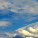 Blue Sky by Charles Adams