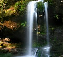Grotto Falls ~ GSMNP by Lisa G. Putman